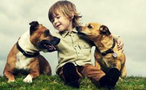 bambino-con-cani