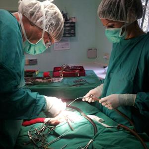 Il Dott. Thomas Roth - Specialista in Chirurgia Veterinaria